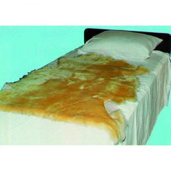 Sheepskin Ranch Sofsheep Genuine Sheepskin Pad