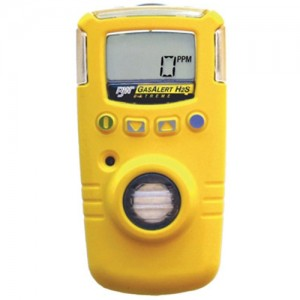 BW Technologies Gas Alert Extreme Portable Gas Detector