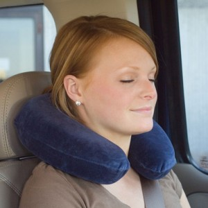 Memory Travel Core Pillow