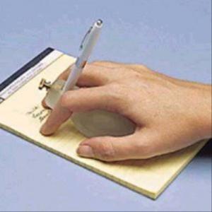 Writing Bird