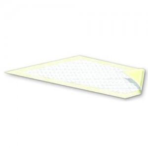 PaperPak Attends Dri-Sorb Plus Underpad