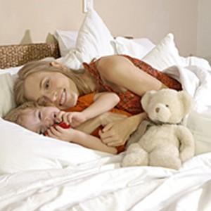 SecureSleep Bed Bug Bedding Bundle