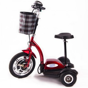 Charged Mobility Stand-N-View Scooter