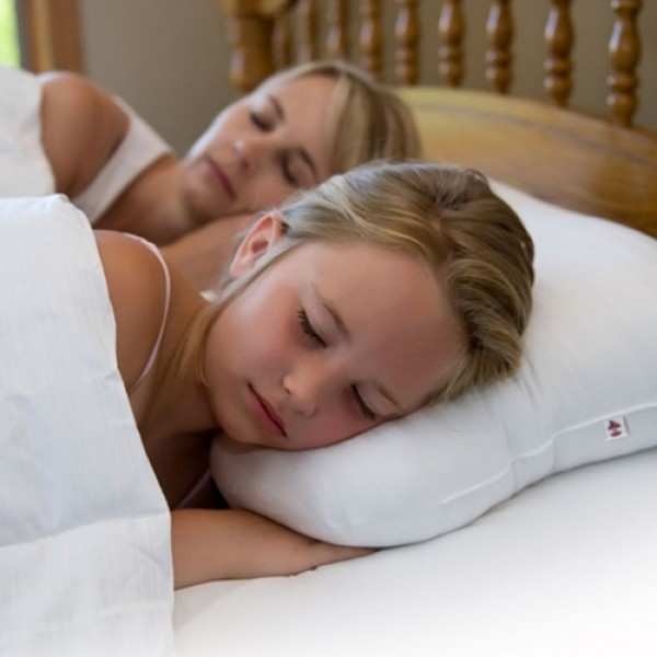 Petite Core Orthopedic Support Pillow